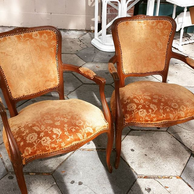 New Arrival _#homedecor #furniture #funstuff #600blockstpete #instaBURG #igersstpete #homedecor #cha