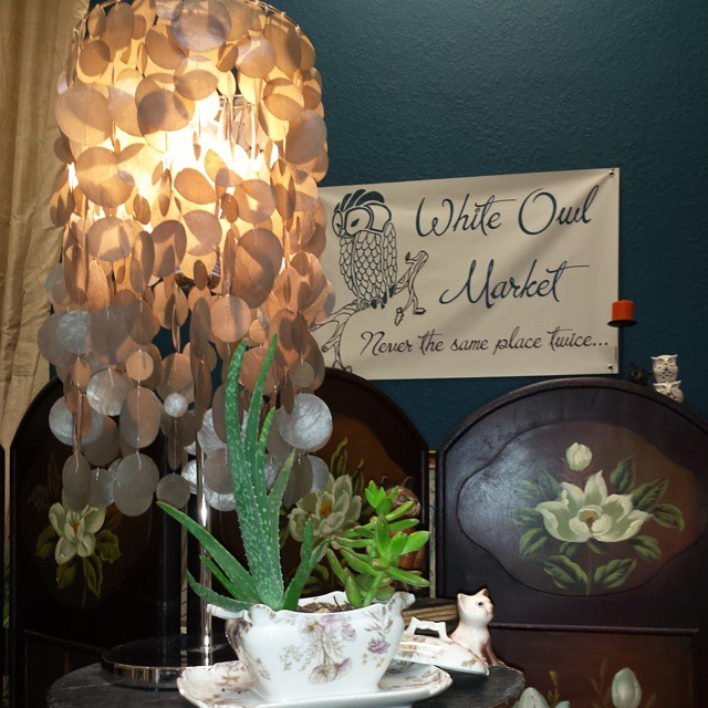 Lamps & succulants!_#home #homedecor #lamps #succulants #lighting