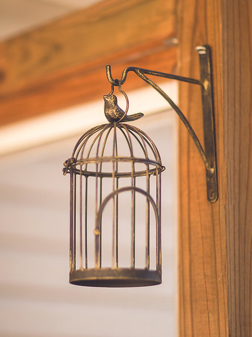 WALL HANGING BIRD CAGE BRONZE