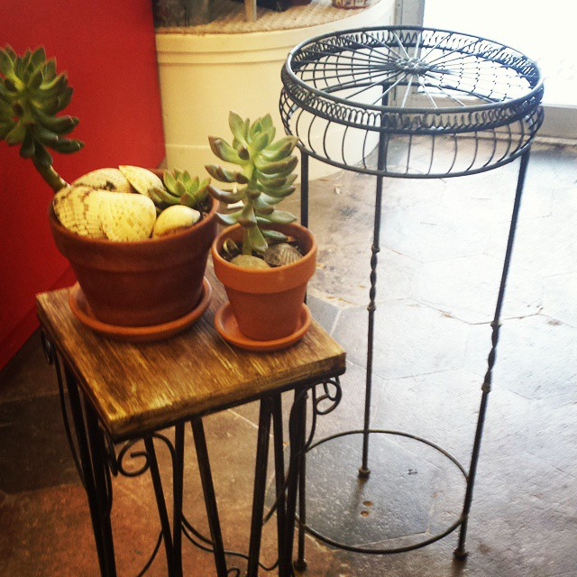 Plant stands_#homedecor #furniture #funstuff #garden
