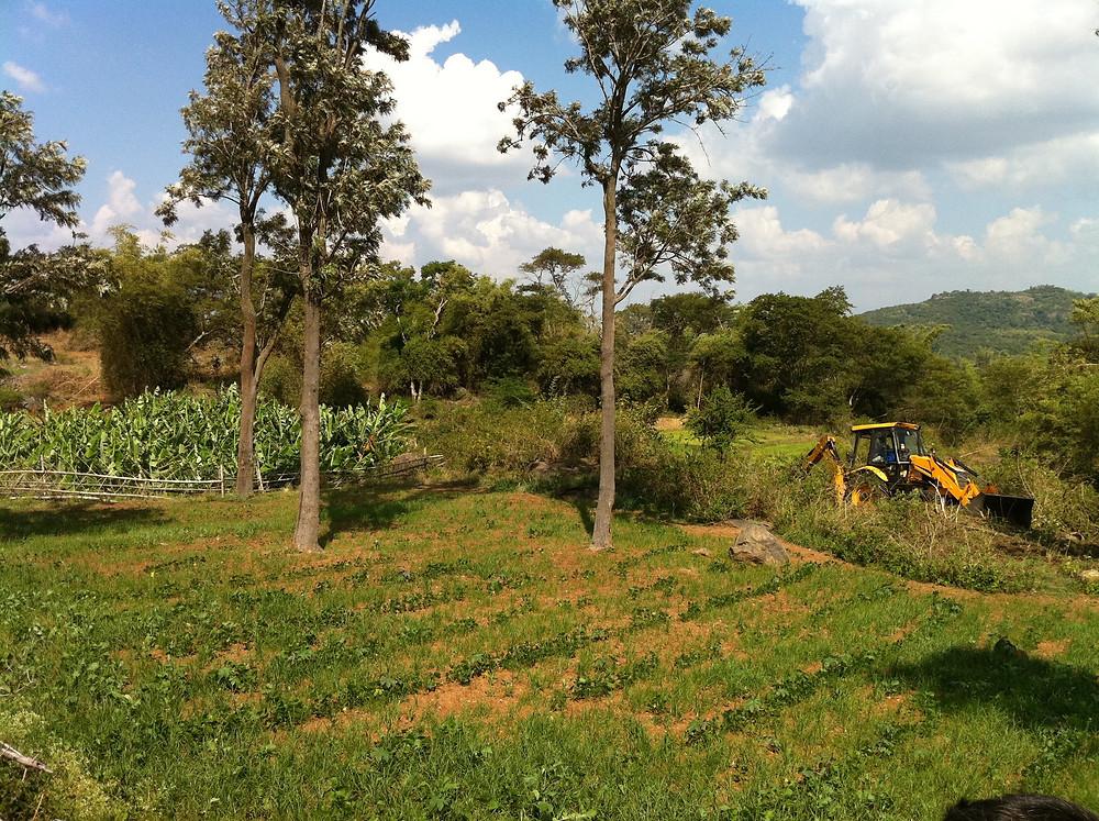 Timberland Oaks Farm Living Project