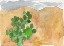 096-En kaktus