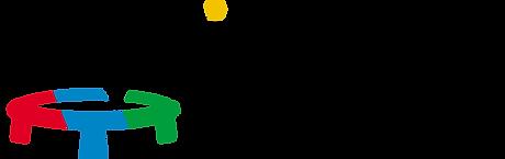 International roundnet federation