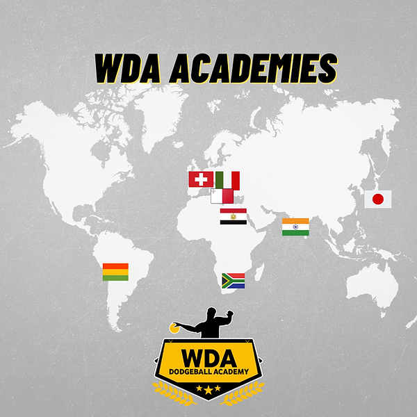 Copy of World Dodgeball Academy World Ex