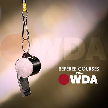 dodgeball referee certification