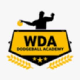 Dodgeball Academy Egypt