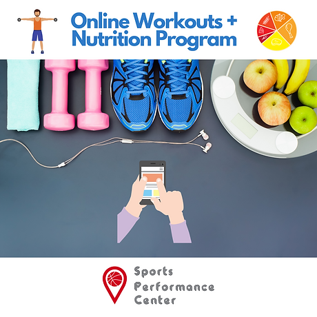 Online Workouts + Nutrition Program (1).