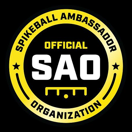 Egypt official spikeball ambassador organization