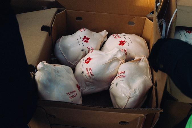 Grade A Turkeys Await!