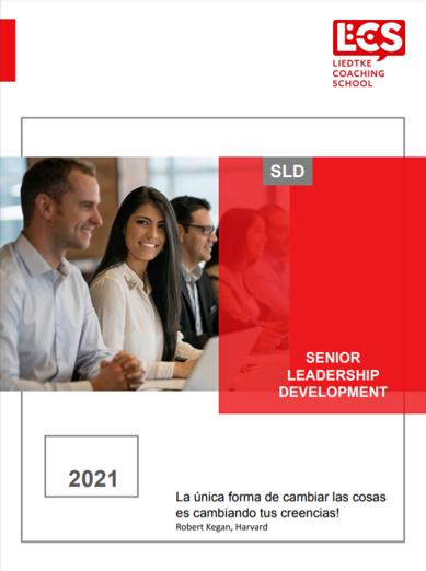 Portada SLD 2021.png