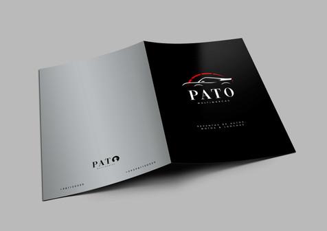 patoid4.jpg