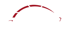 pato1.png