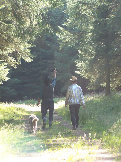 Autumn Equinox Walk