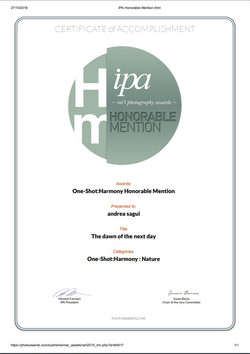 Honorable mention IPA 2018
