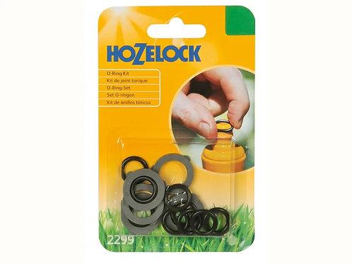 Hozelock O Ring Kit
