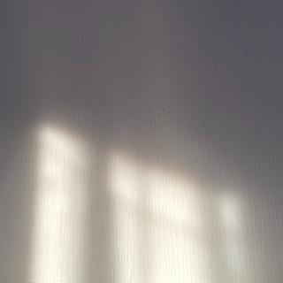 white light portal