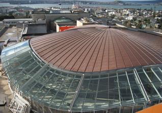 museum glazing roof 2.jpg