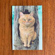 017 ポストカード「ねこはるすばん」木