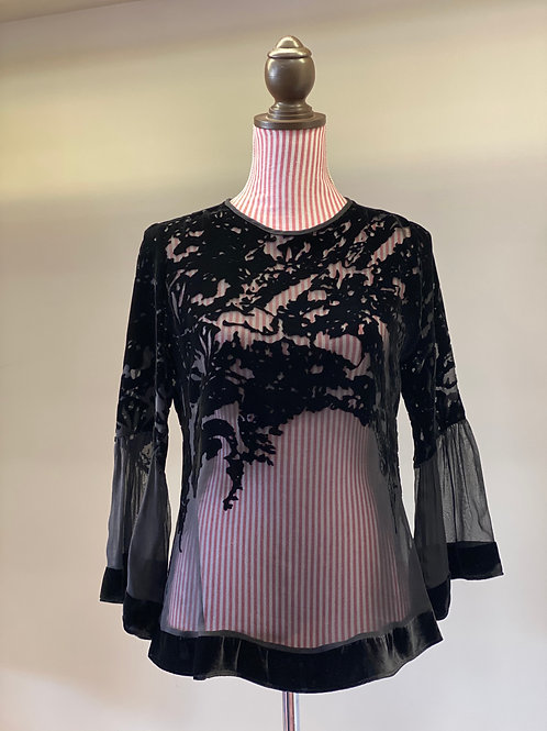 Analili Sheer Top with Velvet