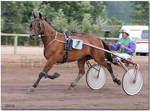 paardenkoersfoto.jpg