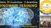 Nuova formazione, WingWave - Coaching
