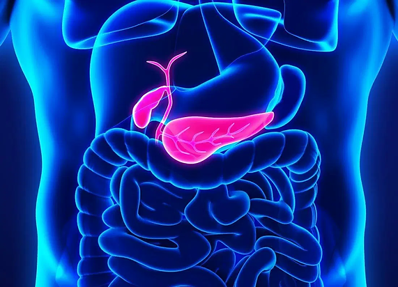 pancreatic-cancer-affects-the-pancreas.j