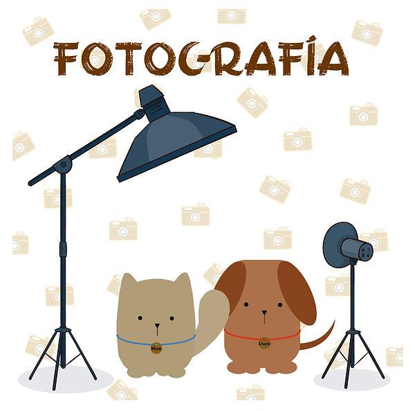 fotografía.jpg