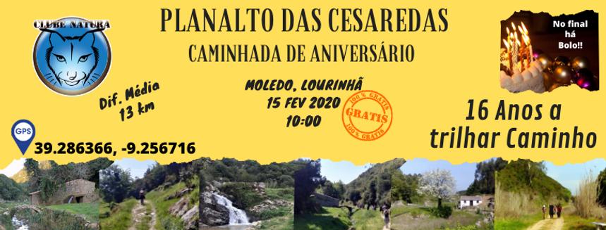 CAMINHADA 16.º ANIVERSÁRIO.png