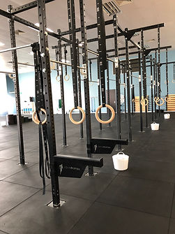 CrossFit Sana Rig Rings; CrossFit Sana Rig Pull up bar