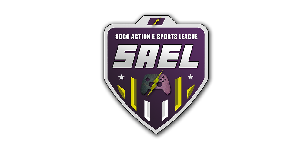 Elementary School E-Sports League