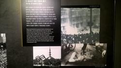 03-Jeju-014