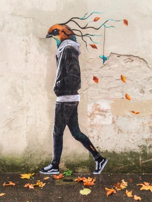 Chayim, migrateur d'automne