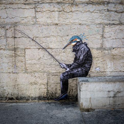 Martin, migrateur pêcheur