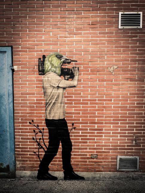 Naoki, migrateur cameraman