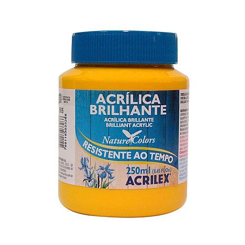 Tinta Acrílica Brilhante Acrilex 250ml Várias Cores