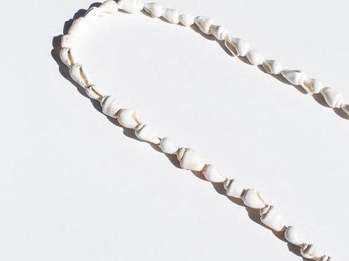 Cuelga-gafas Shell