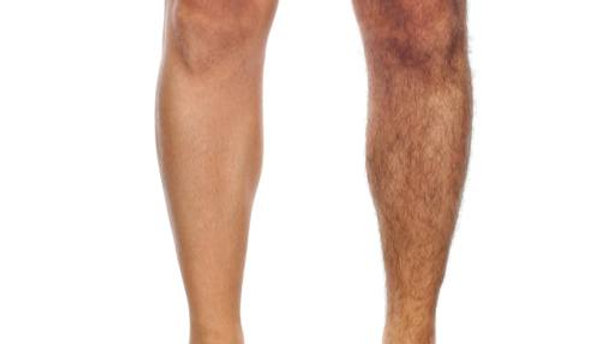 Full Legs with Feet SHR