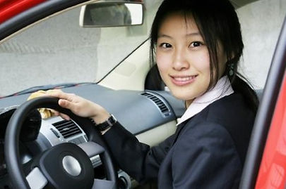 driving instruction for consultants