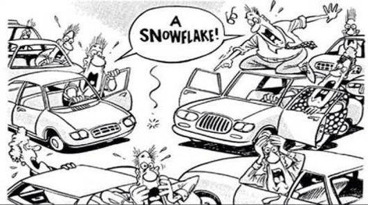 a_snowflake.jpeg