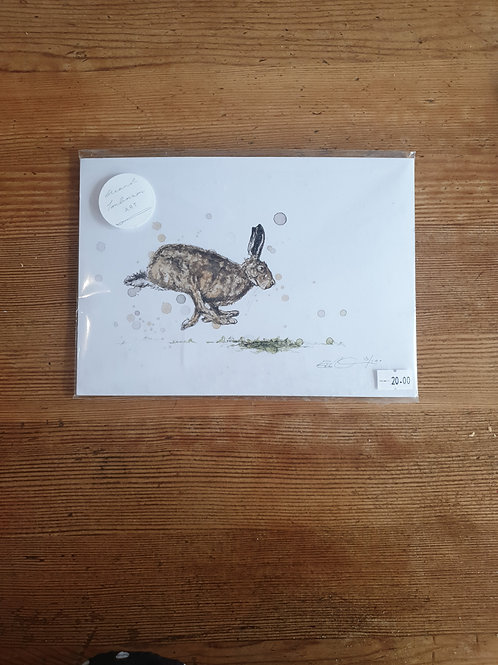 Hare Print a5 unframed by Eleanor Tomlinson