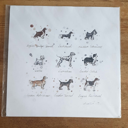 Dog Breed Print by Eleanor Tomlinson