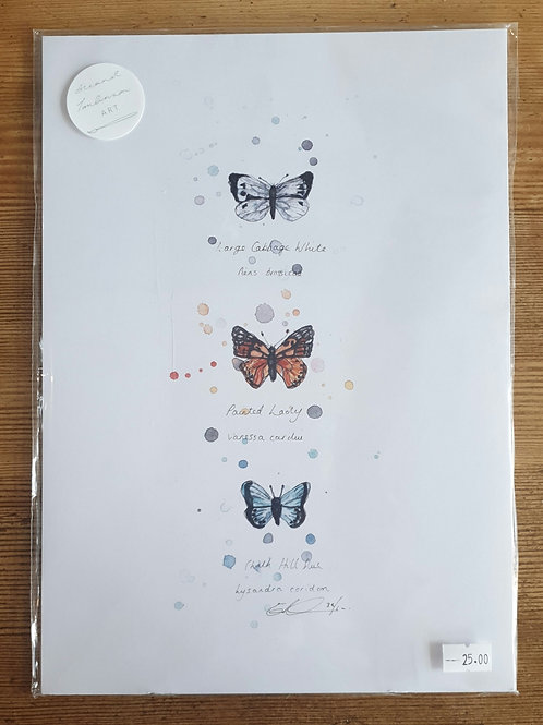 Butterfly Print by Eleanor Tomlinson a4