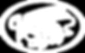 linear logo_white.png