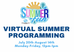 Virtual Summer 2020 Programming In Full Swing!