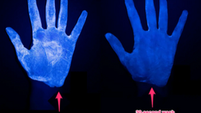 Handwashing: The Best Way to Get Rid of All of the Germs
