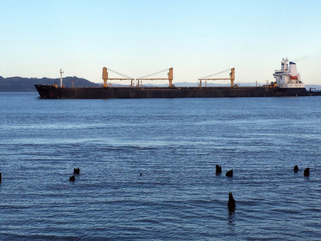 The M/v Moku Pahu Outbound on the Columbia River