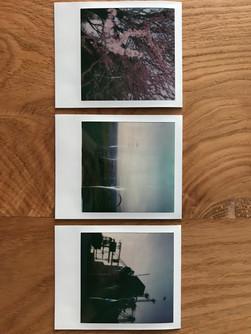 Chasing Light // Kameron Cooper — Photography