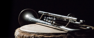 The theme for the next meeting of our Photoclub is music. I took an old trumpet and put it