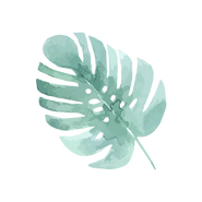 Tropical Leaves 4_edited.png