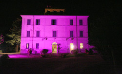 illuminazione rosa (3).jpg